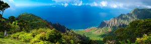 Hawaiian view from the top of the island