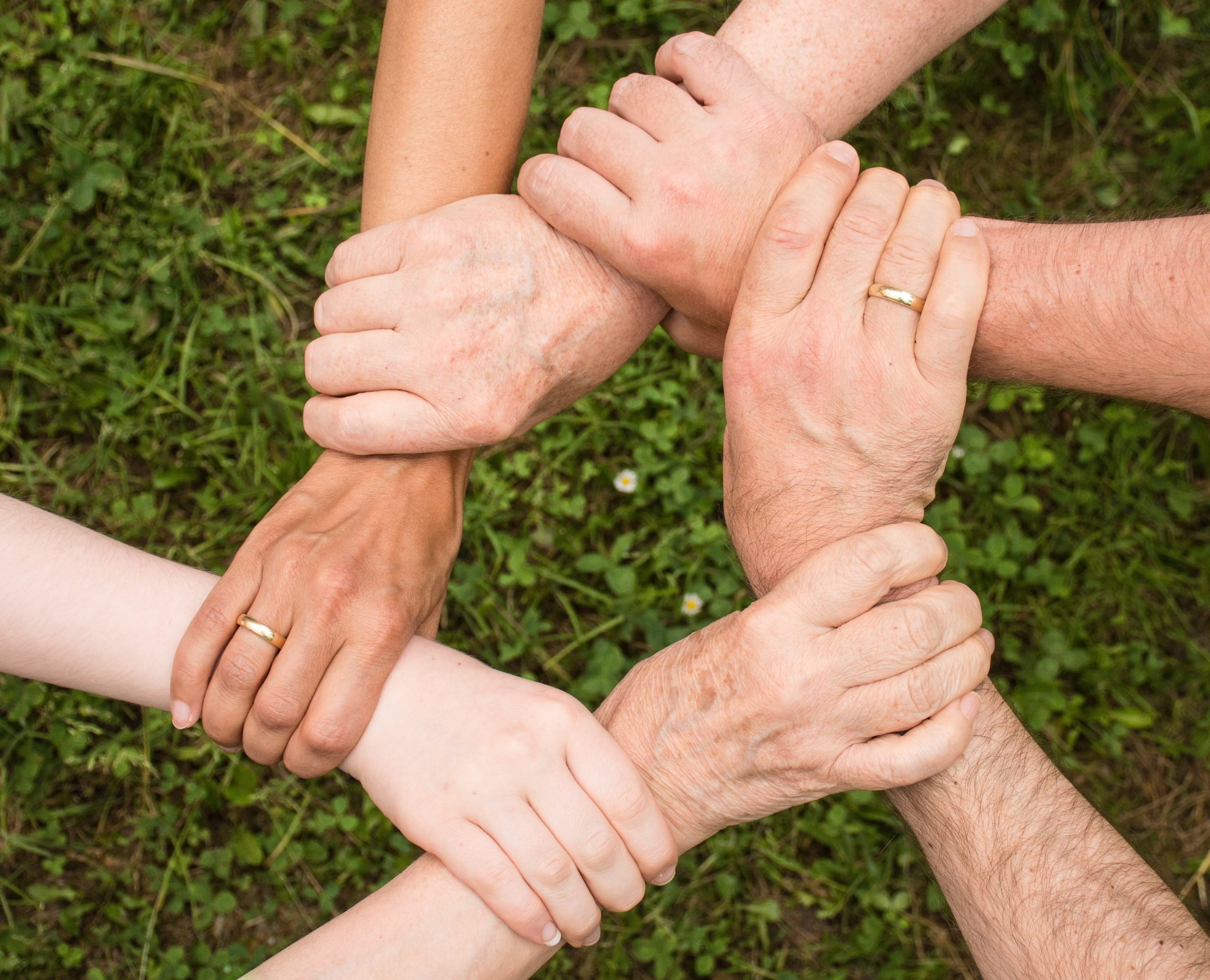 Intertwined hands of family members